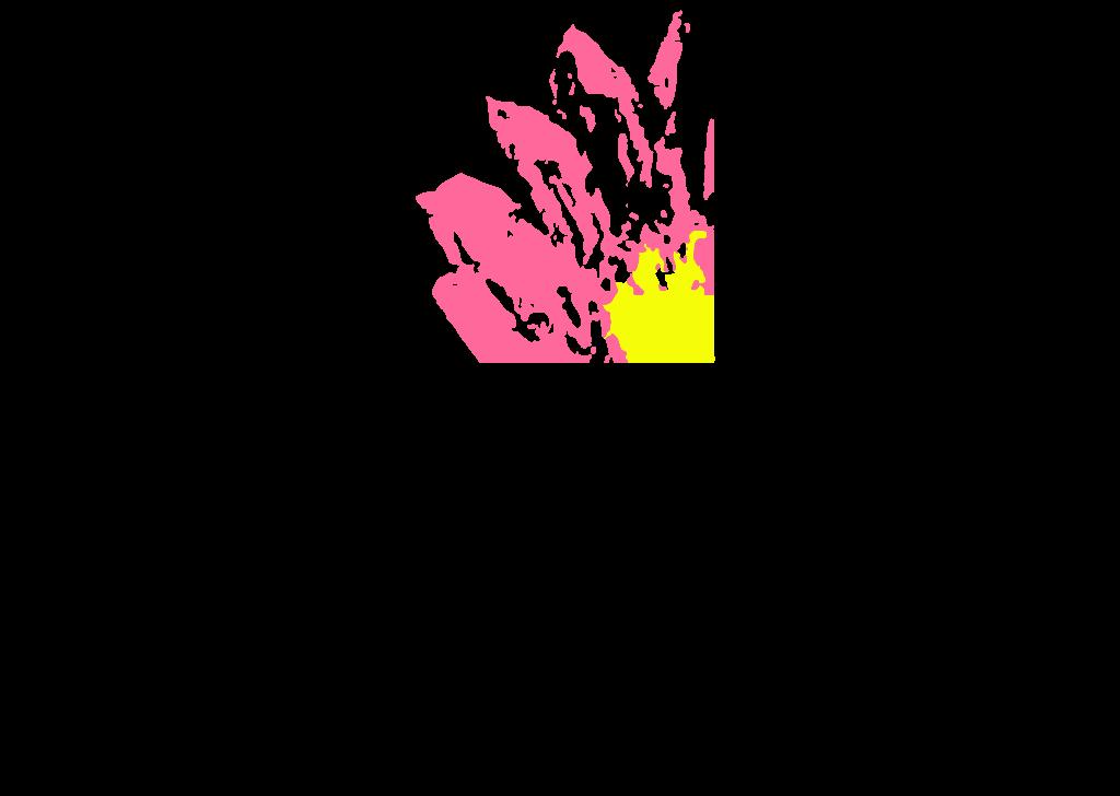 Logo - Aliments Naturels Veda Balance